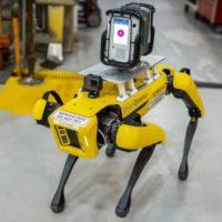 Los perros robot Fluffy y Spot que trabajarán para optimizar las plantas de producción de Ford